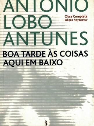 Boa Tarde às Coisas Aqui em Baixo de António Lobo Antunes